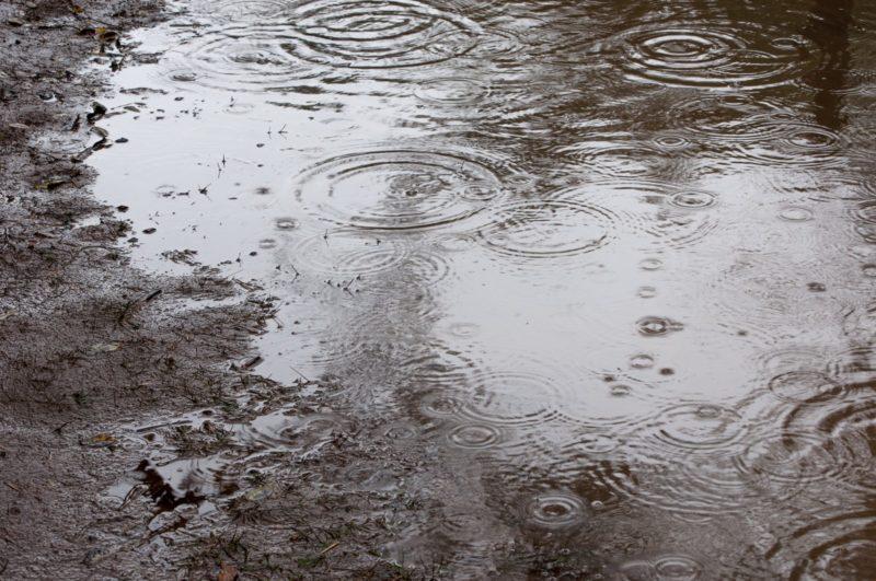 水たまりと雨